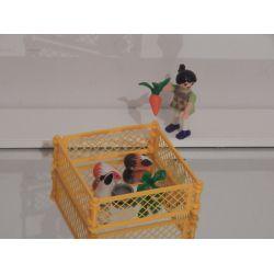 Enfant Et Les Hamsters Playmobil